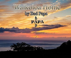 Video #1 Waikoloa Home